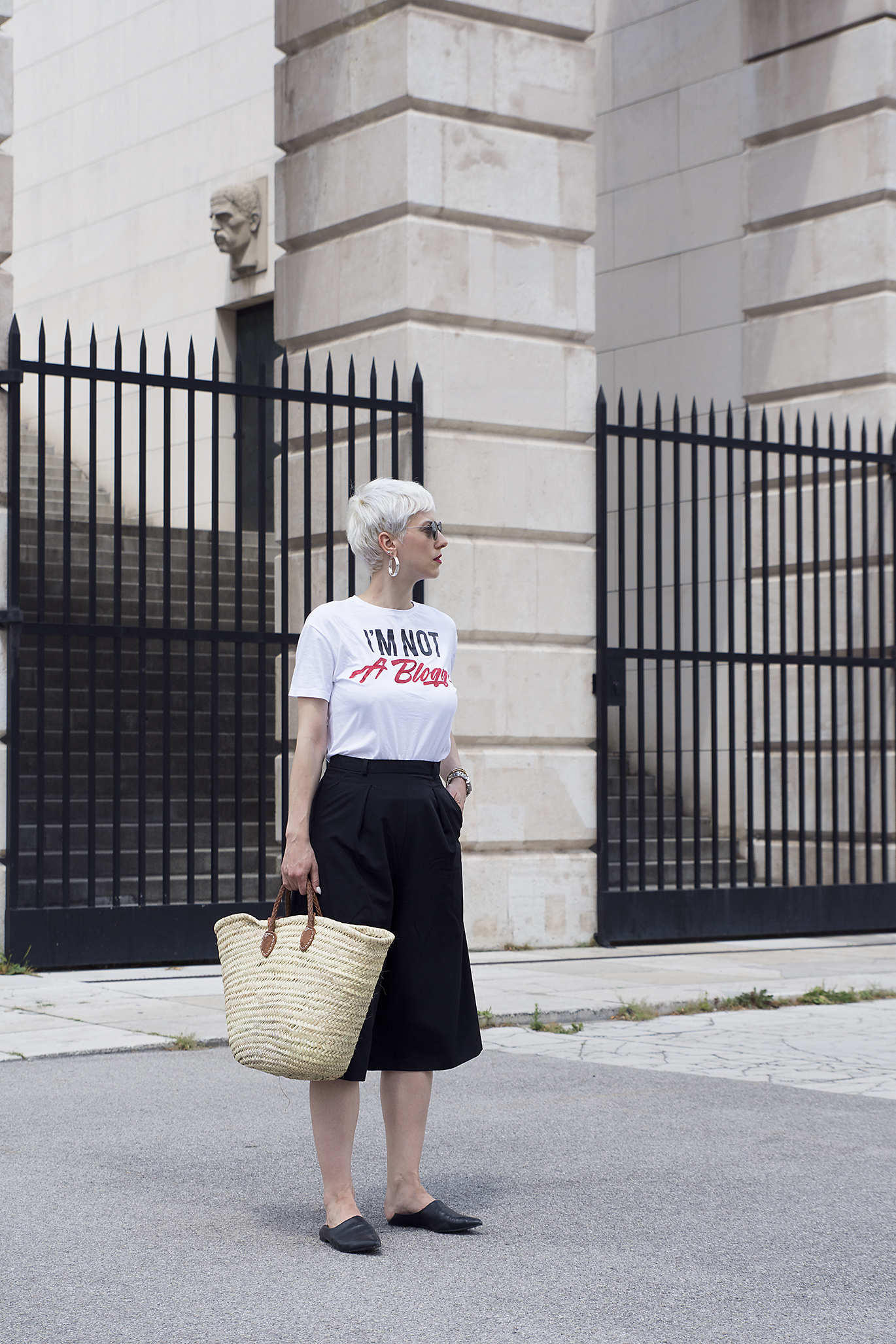 i'm not a blogger t shirt